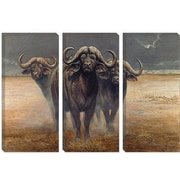 iCanvas 'Cape Buffalos' by Harro Maass Graphic Art on Canvas; 26'' H x 40'' W x 0.75'' D