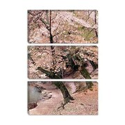 iCanvas 'Cherry Blossom Lane' by Monte Nagler Painting Print on Canvas; 18'' H x 12'' W x 0.75'' D