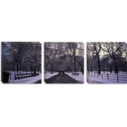 iCanvas Panoramic Bare Trees in a Park, New York City Photographic Print on Canvas