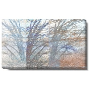 Studio Works Modern ''Winter Branches'' by Zhee Singer Graphic Art on Wrapped Canvas