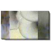 Studio Works Modern ''Oyster Vertex'' by Zhee Singer Graphic Art on Wrapped Canvas