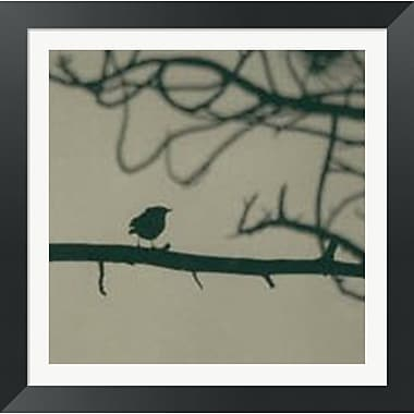 Evive Designs Caligraphy Bird II by Elena Ray Framed Photographic Print