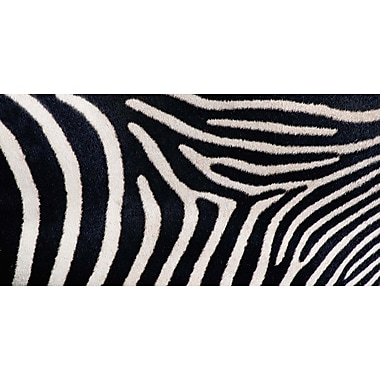 Evive Designs Close-up of Greveys Zebra Stripes by Panoramic Images Photographic Print