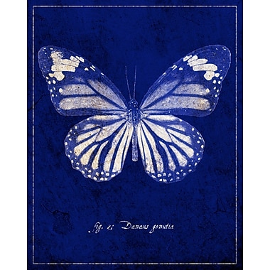 Evive Designs Common Tiger Butterfly Cyanotype by GI ArtLab Graphic Art