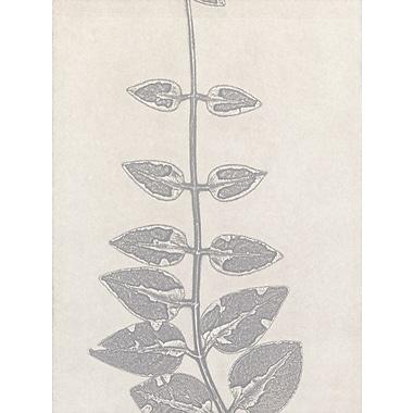 Evive Designs Vines B by Mary Margaret Briggs Painting Print