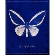 Evive Designs Malachite Butterfly Cyanotype by GI ArtLab Graphic Art