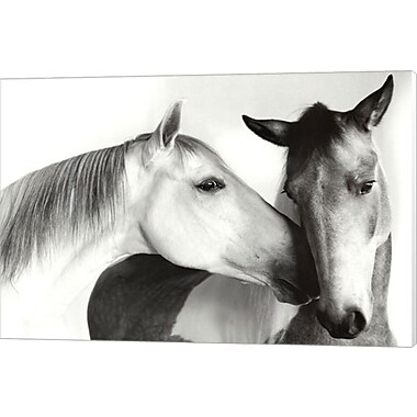 Evive Designs Nuzzle by Van Otteren Photographic Print on Wrapped Canvas