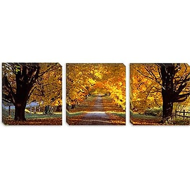 iCanvas Panoramic Road, Maryland Photographic Print on Canvas; 24'' H x 72'' W x 1.5'' D
