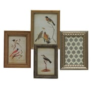 Import Collection Randolph Picture Frame (Set of 4)