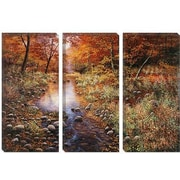 iCanvas 'Autumn Gold' by Bill Makinson Photographic Print on Canvas; 26'' H x 40'' W x 1.5'' D