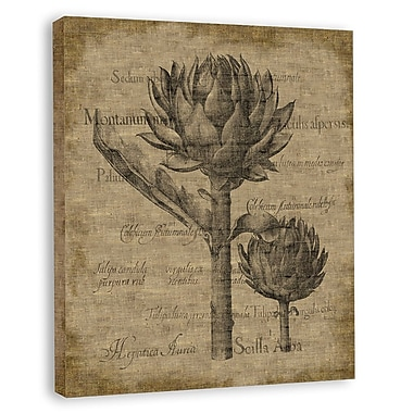 Melissa Van Hise Bessler (Artichoke) Graphic Art on Wrapped Canvas