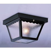 Volume Lighting 1 Light Outdoor Ceiling Mount; Black