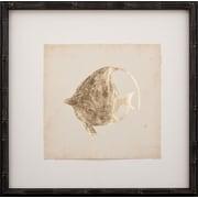 Mirror Image Home Gold Leaf Fish IV Framed Graphic Art