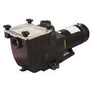Blue Wave TidalWave 1 HP Replacement Pump For I/G Pools, Black