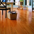 Anderson Floors Jacks Creek 2-1/4'' Solid Red Oak Flooring in Butterscotch