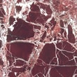 MSI 12'' x 12'' Polished Marble Tile in Rosso Levanto