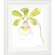 Evive Designs Orchid Beauty I by Jennifer Goldberger Framed Painting Print