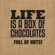 Artistic Reflections Life Is a Box of Chocolates Full of Nuts Textual Art
