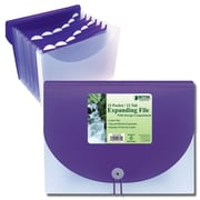 Better Office Products Letter Size Expanding File, 13 Pocket