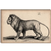 iCanvas 'A Lion Standing' by Wenceslaus Hollar Graphic Art on Canvas; 12'' H x 18'' W  x 1.5'' D