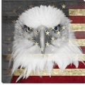 iCanvas Bald American Eagle Graphic Art on Canvas in Black / Red; 26'' H x 26'' W x 0.75'' D