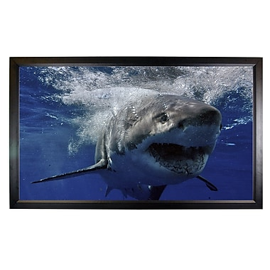 Mustang Fixed Frame Projection Screen; 52'' H x 92'' W