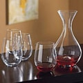 Wine Enthusiast Companies 2-Piece U Decanter And Tumblers Gift Set