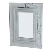 Foreign Affairs Home Decor Safari Pale Mirror