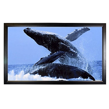 Mustang Fixed Frame Projection Screen; 45'' H x 80'' W