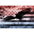 iCanvas Bald American Eagle, U.S. Flag Graphic Art on Canvas; 12'' H x 18'' W x 0.75'' D