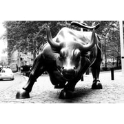 iCanvas Political 'Wall Street Bull' Photographic Print on Canvas; 40'' H x 60'' W x 1.5'' D