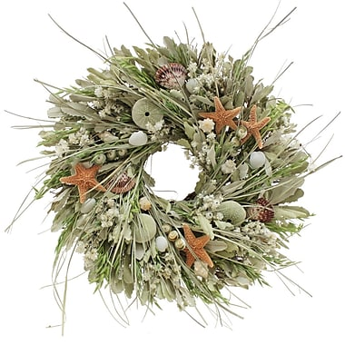 The Christmas Tree Company Seashell and Dried Floral Wreath 18