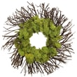The Christmas Tree Company Moss Garden Dried Floral Wreath 18in.
