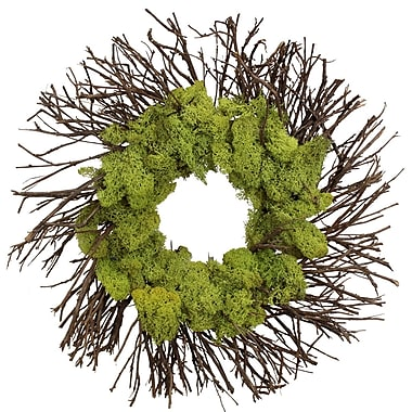 The Christmas Tree Company Moss Garden Dried Floral Wreath 18