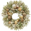 The Christmas Tree Company Beach Cabana Seashell and Dried Floral Wreath 22in.