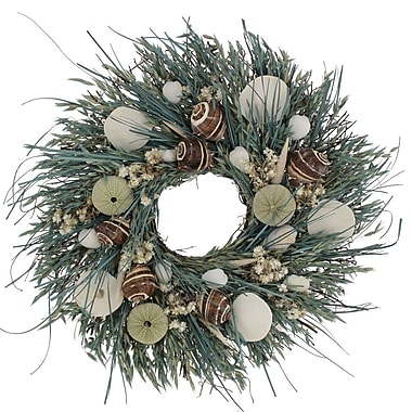 The Christmas Tree Company Waves and Water Seashell and Dried Floral Wreath 18