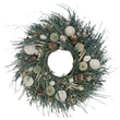The Christmas Tree Company Waves and Water Seashell and Dried Floral Wreath 22in.