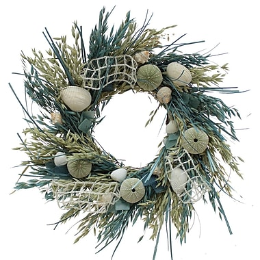 The Christmas Tree Company Crystal Tides Seashell and Dried Floral Wreath 18
