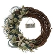 The Christmas Tree Company Crystal Tides Variation Seashell and Dried Floral Wreath 22in.