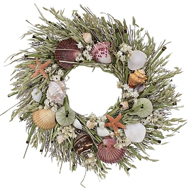 The Christmas Tree Company Tide Pool Seashell and Dried Floral Wreath 16