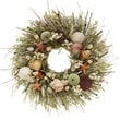 The Christmas Tree Company Tide Pool Seashell and Dried Floral Wreath 18in.