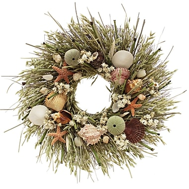 The Christmas Tree Company Tide Pool Seashell and Dried Floral Wreath 18