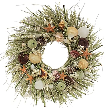 The Christmas Tree Company Tide Pool Seashell and Dried Floral Wreath 22