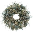 The Christmas Tree Company We Swim Seashell and Dried Floral Wreath 18in.