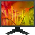 EIZO INC S2133-BK 21.3in. Monitor