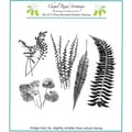 Chapel Road 5 3/4in. x 6 3/4in. Cling Mounted Rubber Stamp Set, Fern Set