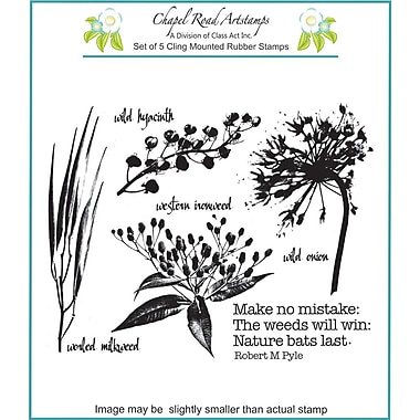 Chapel Road 5 3/4in. x 7 3/4in. Cling Mounted Rubber Stamp Set, Ironweed