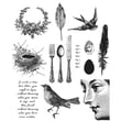 """Tim Holtz® Stampers Anonymous 7"""" x 8 1/2"""" Cling Rubber Stamp Set, Nature Walk"""