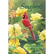 LANG® Songbirds 2015 Monthly Pocket Planner