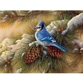 LANG® Boxed Christmas Cards With Envelopes, December Blue Jay